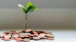 Programa da Fecomércio SC oferece crédito para micro e pequenas empresas